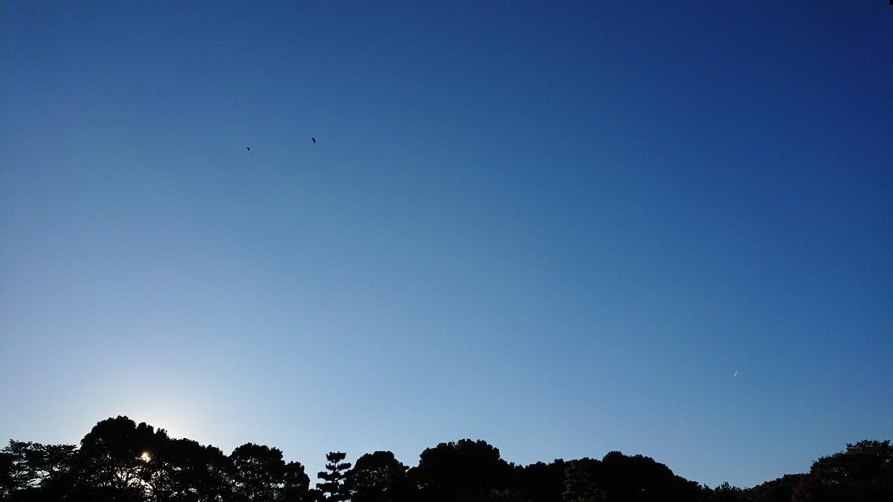 f:id:fusani:20181120183420j:plain