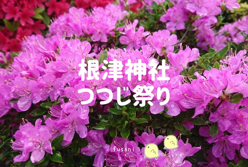 f:id:fusani:20190430233720p:plain