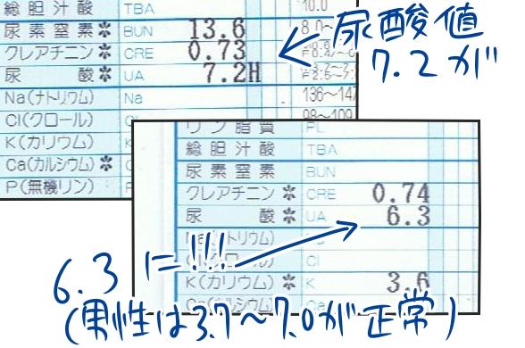 f:id:fushigishiatsu:20150817100837j:plain