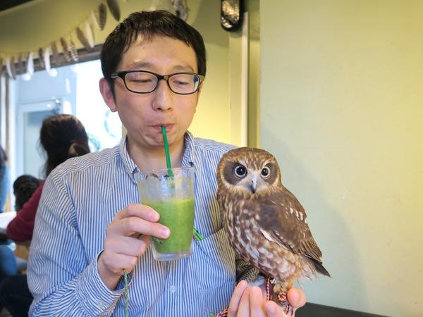 f:id:fushigishiatsu:20160215092738j:plain