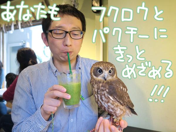 f:id:fushigishiatsu:20160217144438j:plain