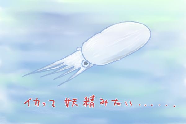 f:id:fushigishiatsu:20161221181456j:plain