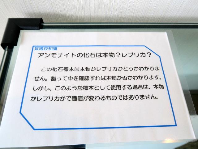 f:id:fushigishiatsu:20170425101120j:plain