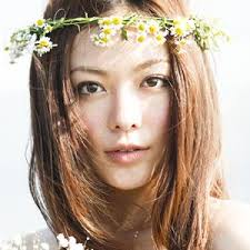 f:id:fushimiakimasa:20161207123046j:plain
