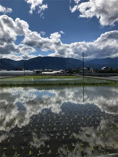 f:id:fusufusu:20190619213657j:plain