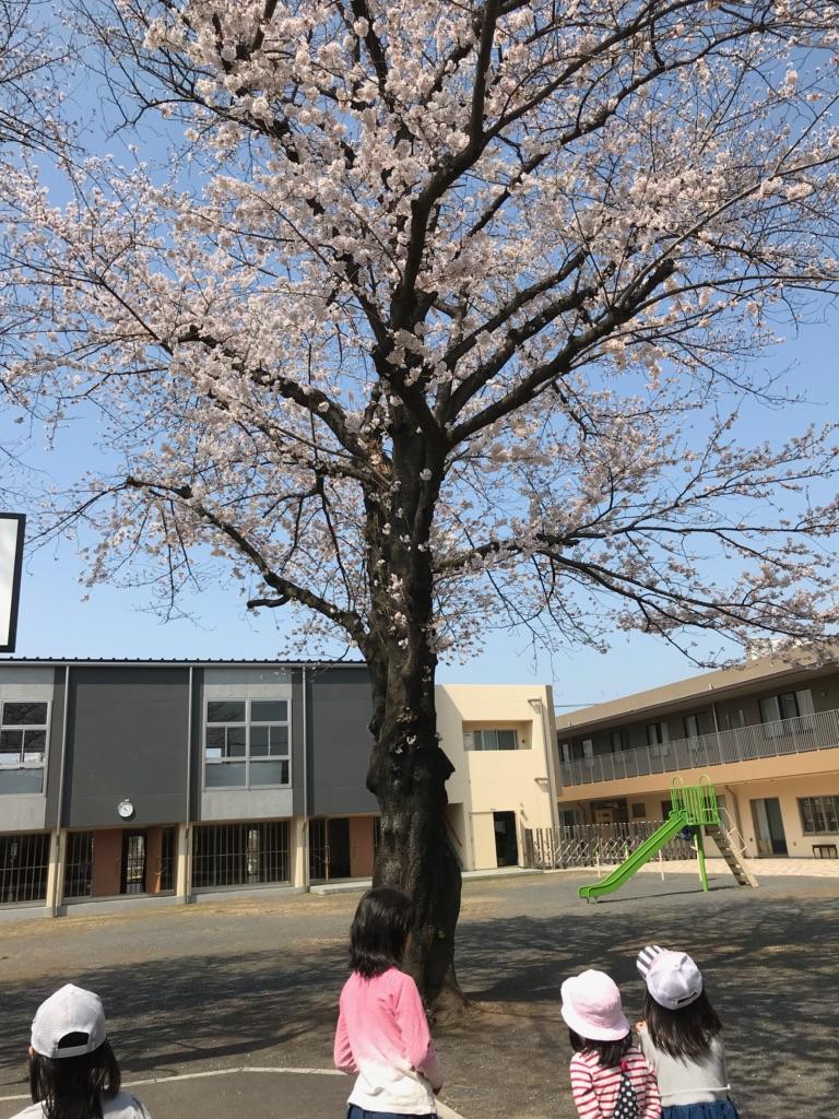 f:id:futabamusashi:20180328164317j:plain