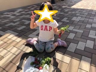 f:id:futabamusashi:20190524143649j:plain