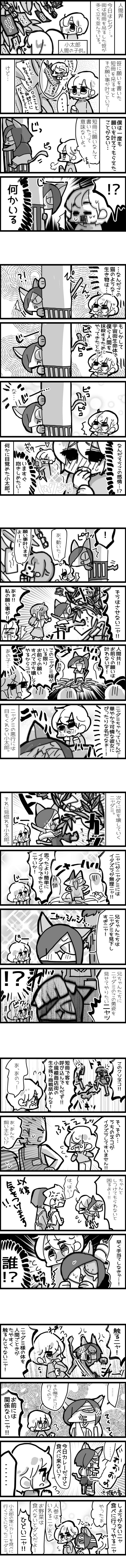 neetsadami.com_4話