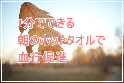f:id:futarigurashi:20161110235443j:plain