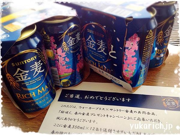 f:id:futarigurashi:20170723191657j:plain