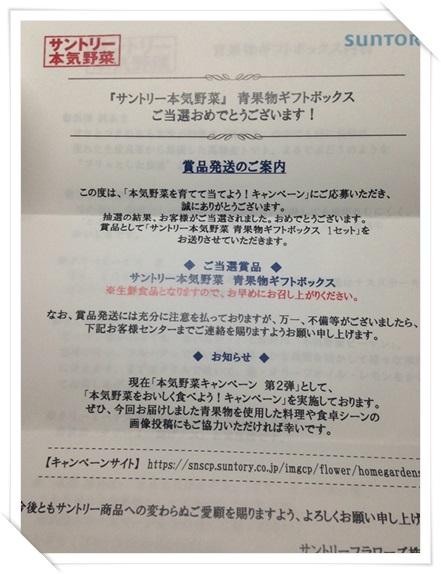 f:id:futarigurashi:20170801141238j:plain