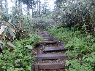 f:id:futarinoyama:20120715204126j:image:w360