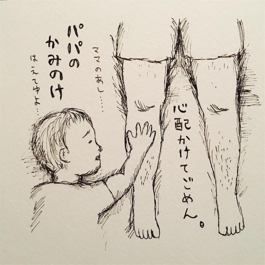 f:id:futomomushi:20170715065935j:image