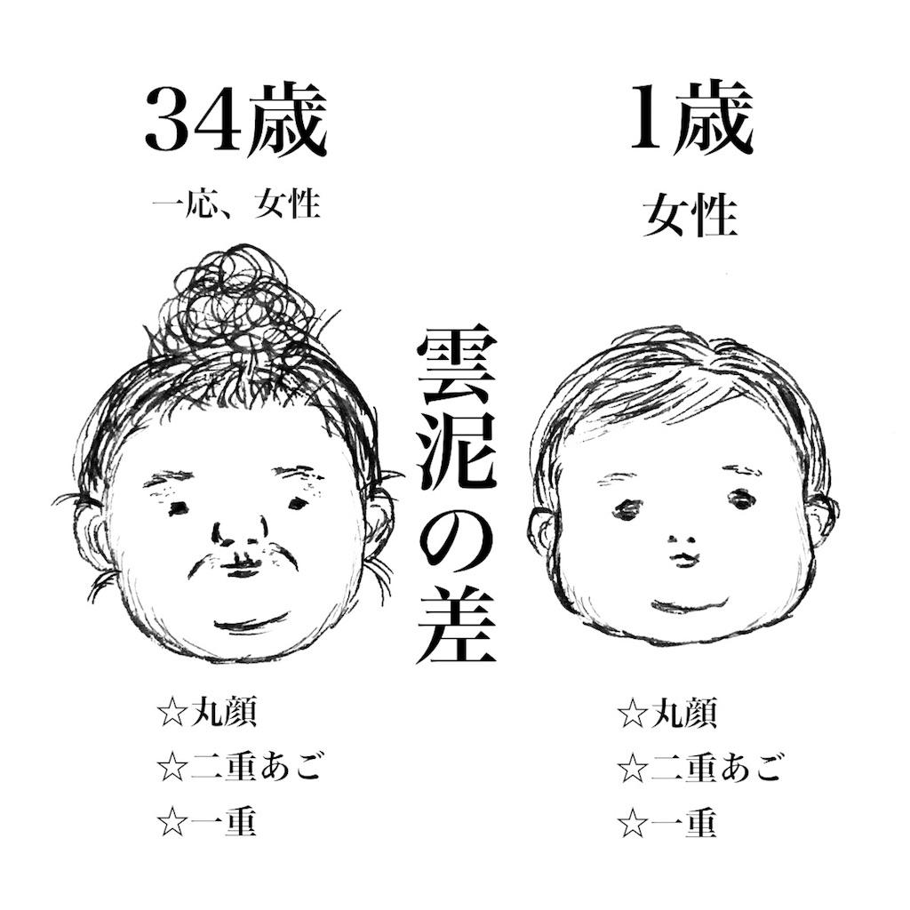 f:id:futomomushi:20170726152336j:image