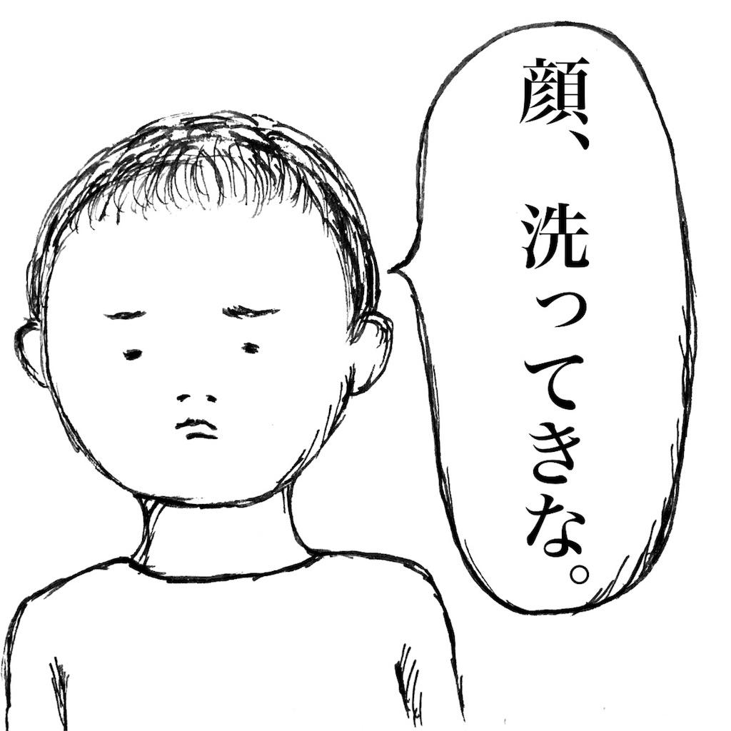 f:id:futomomushi:20170729062456j:image