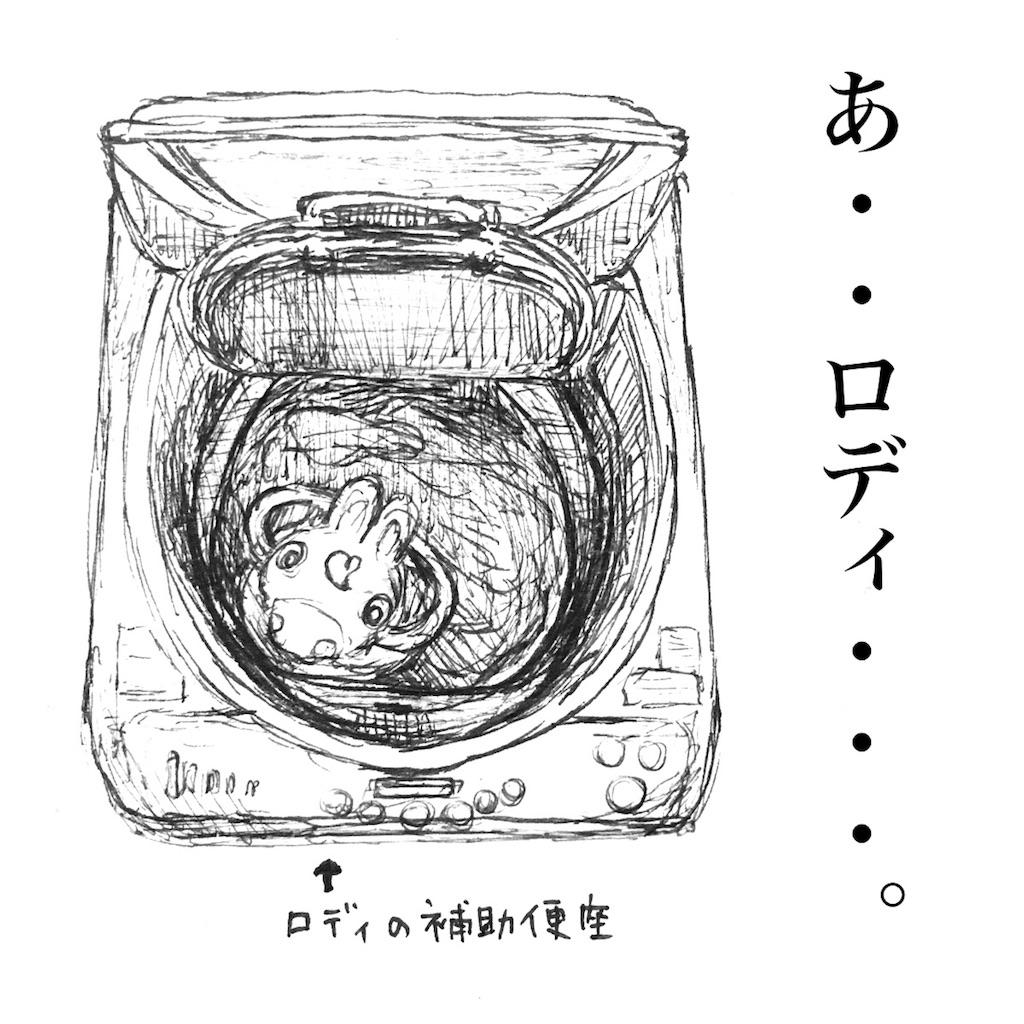 f:id:futomomushi:20170913154614j:image