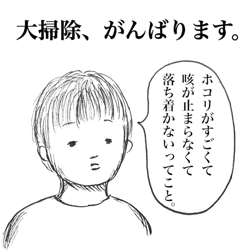 f:id:futomomushi:20171230143747j:image