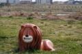 多摩川遊園のライオン