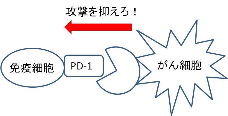 f:id:futuno-sarariman:20181002173613j:plain