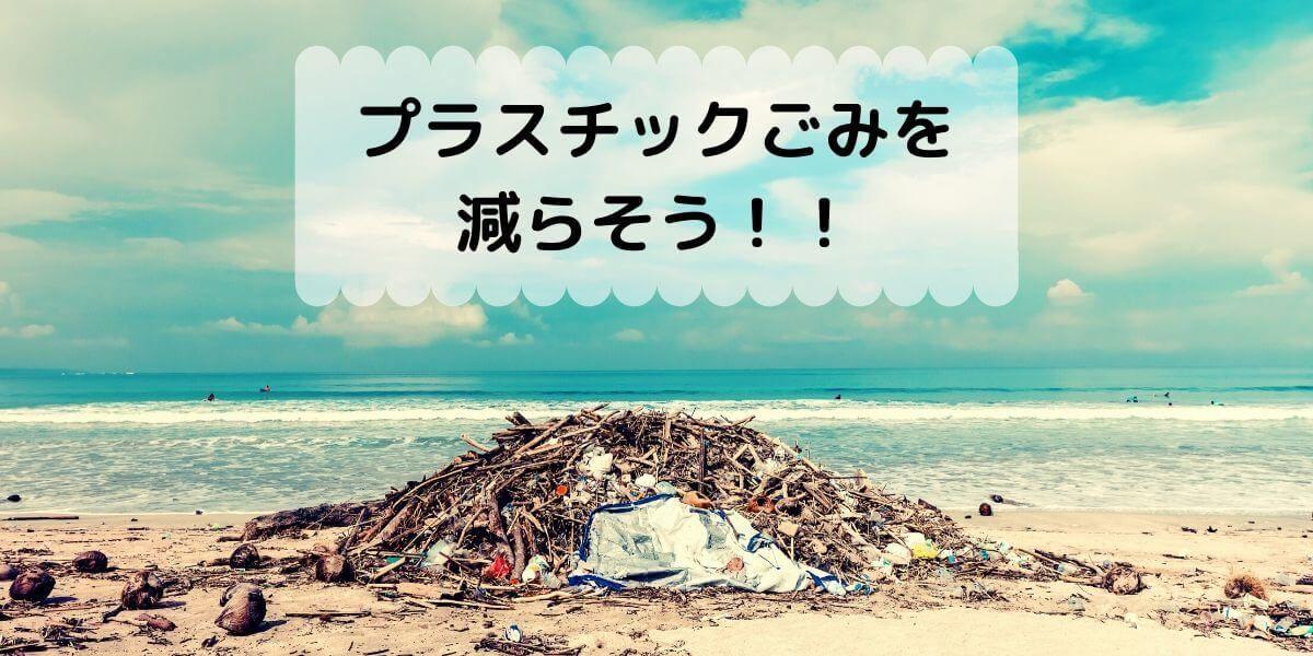 プラスチックごみを減らそう
