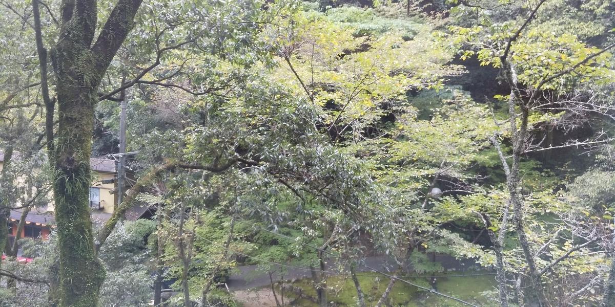 f:id:fuura-sun:20191007223210j:plain