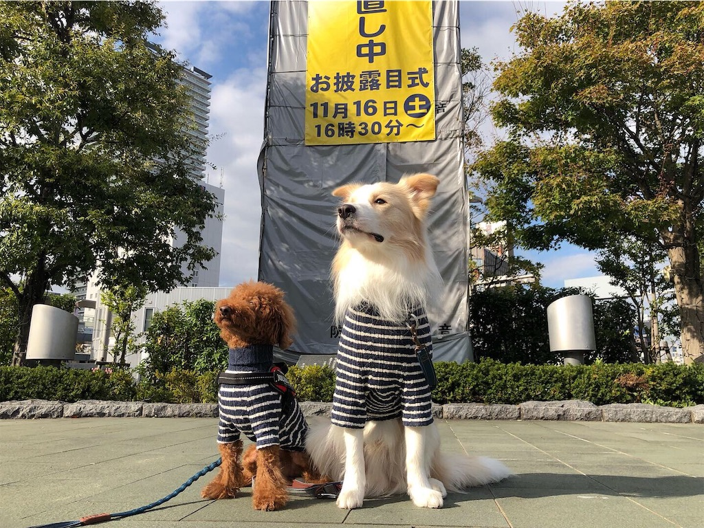 f:id:fuuraitenki:20191222114314j:image