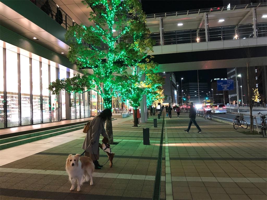 f:id:fuuraitenki:20191225103356j:image