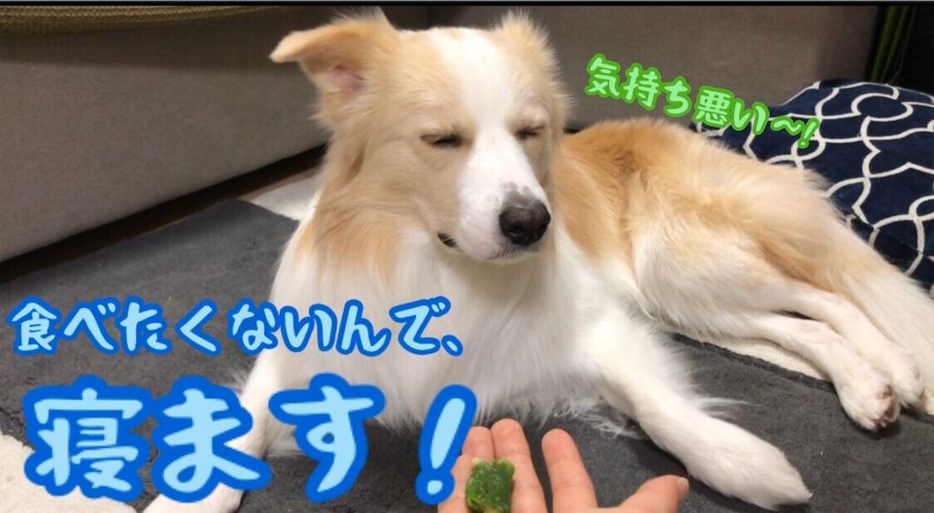 f:id:fuuraitenki:20191226124040j:image