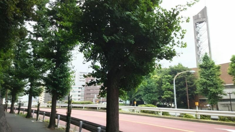 f:id:fuuu50:20160619222605j:plain