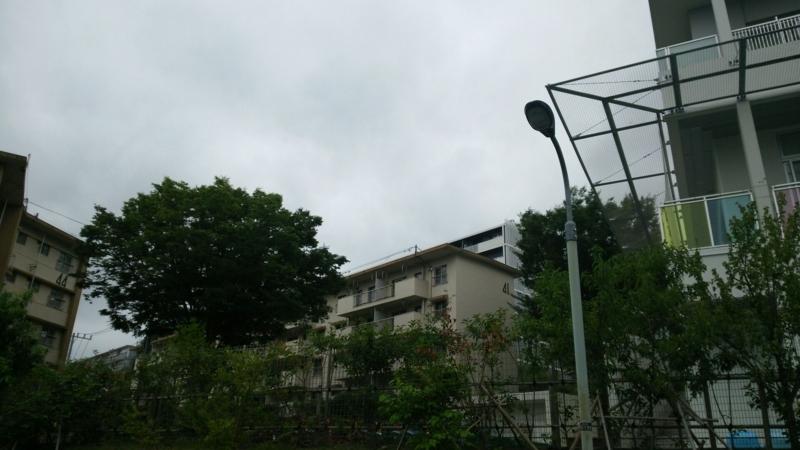 f:id:fuuu50:20170811205044j:plain