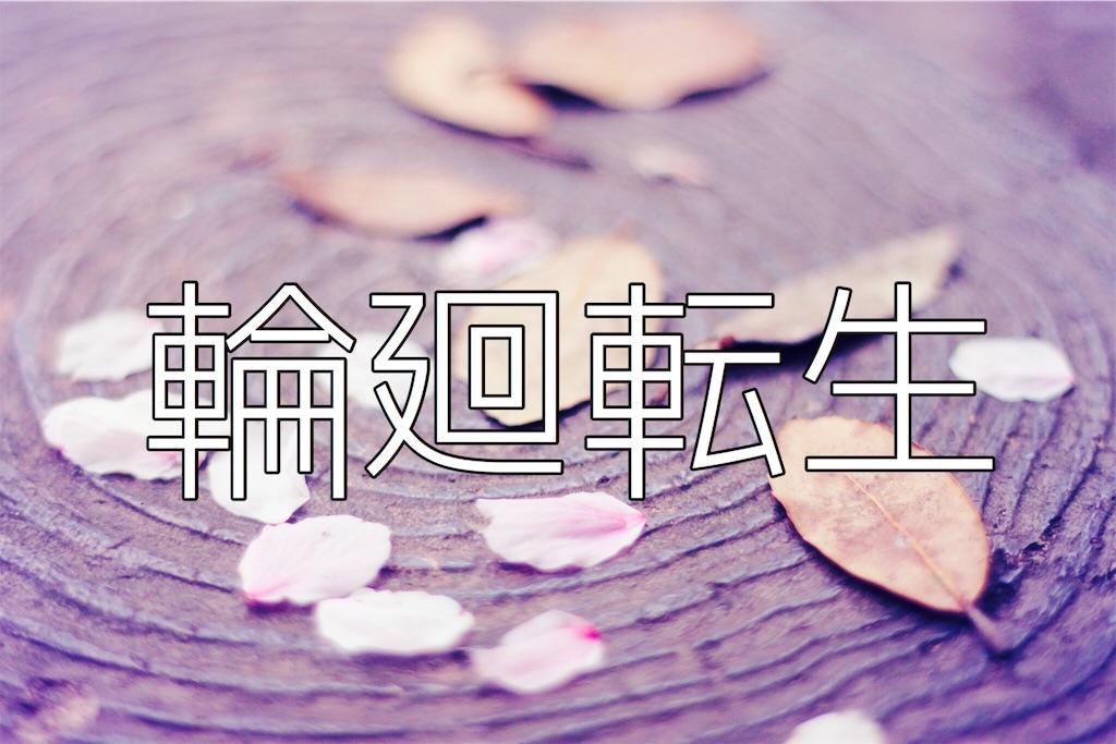 f:id:fuuukuuu:20181202165035j:image