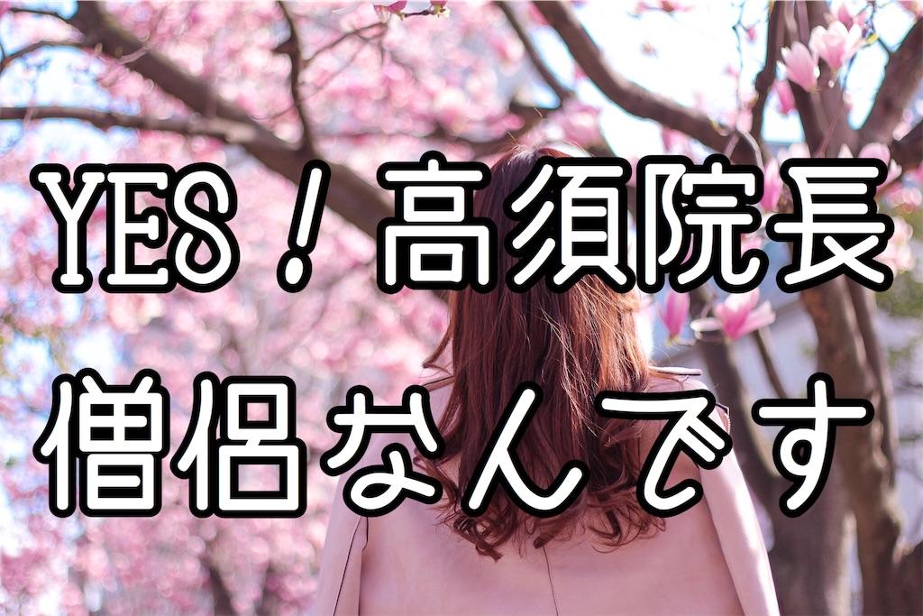 f:id:fuuukuuu:20181230195936j:image