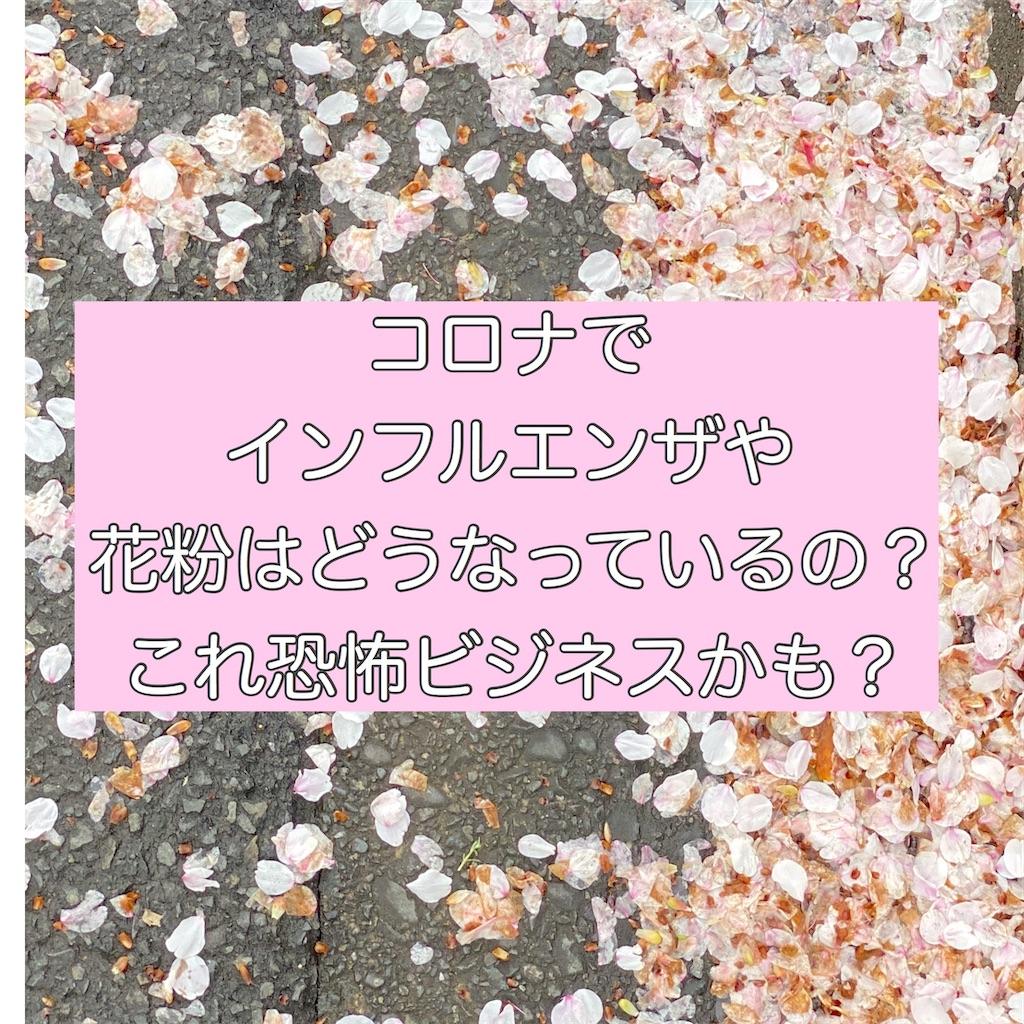f:id:fuuukuuu:20200330124151j:image