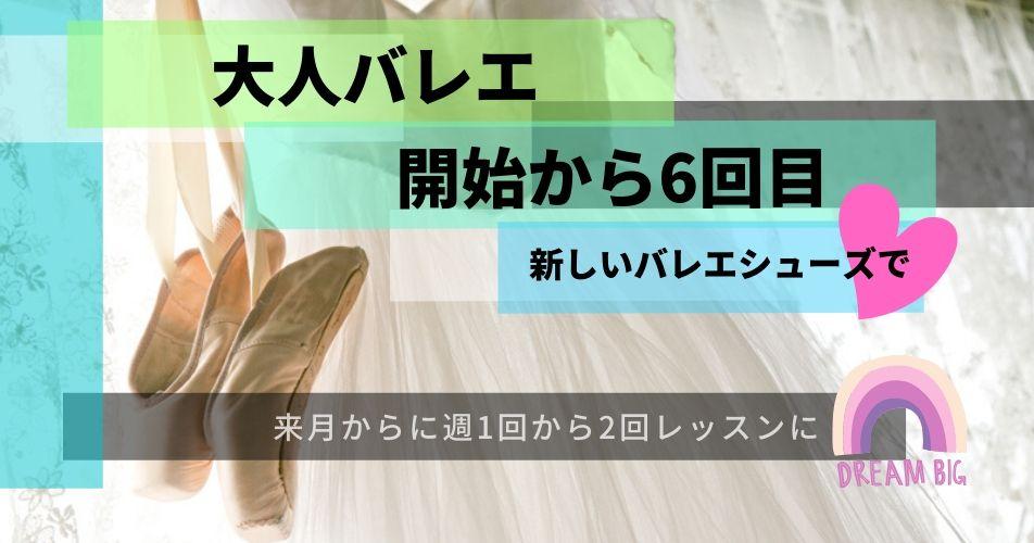 f:id:fuwa-fuwa-sheep-k-co:20200218114057j:plain