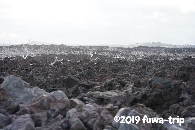f:id:fuwa-trip:20190715145158j:plain