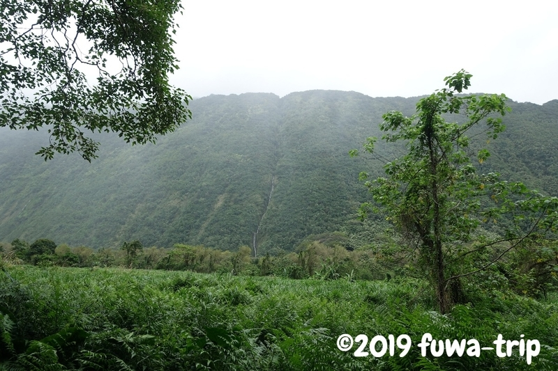 f:id:fuwa-trip:20190731153729j:plain