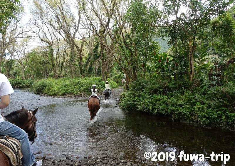 f:id:fuwa-trip:20190731153743j:plain