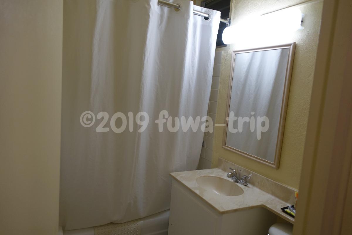 f:id:fuwa-trip:20200124165705j:plain