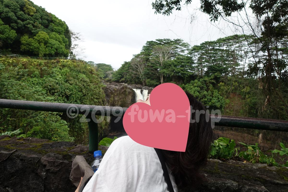 f:id:fuwa-trip:20200127105546j:plain