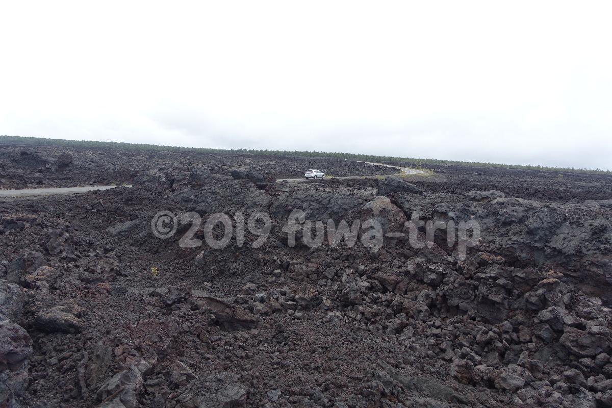 f:id:fuwa-trip:20200207165732j:plain