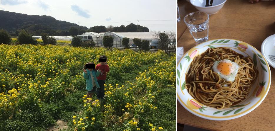 道の駅 とみうらに枇杷倶楽部 菜の花畑