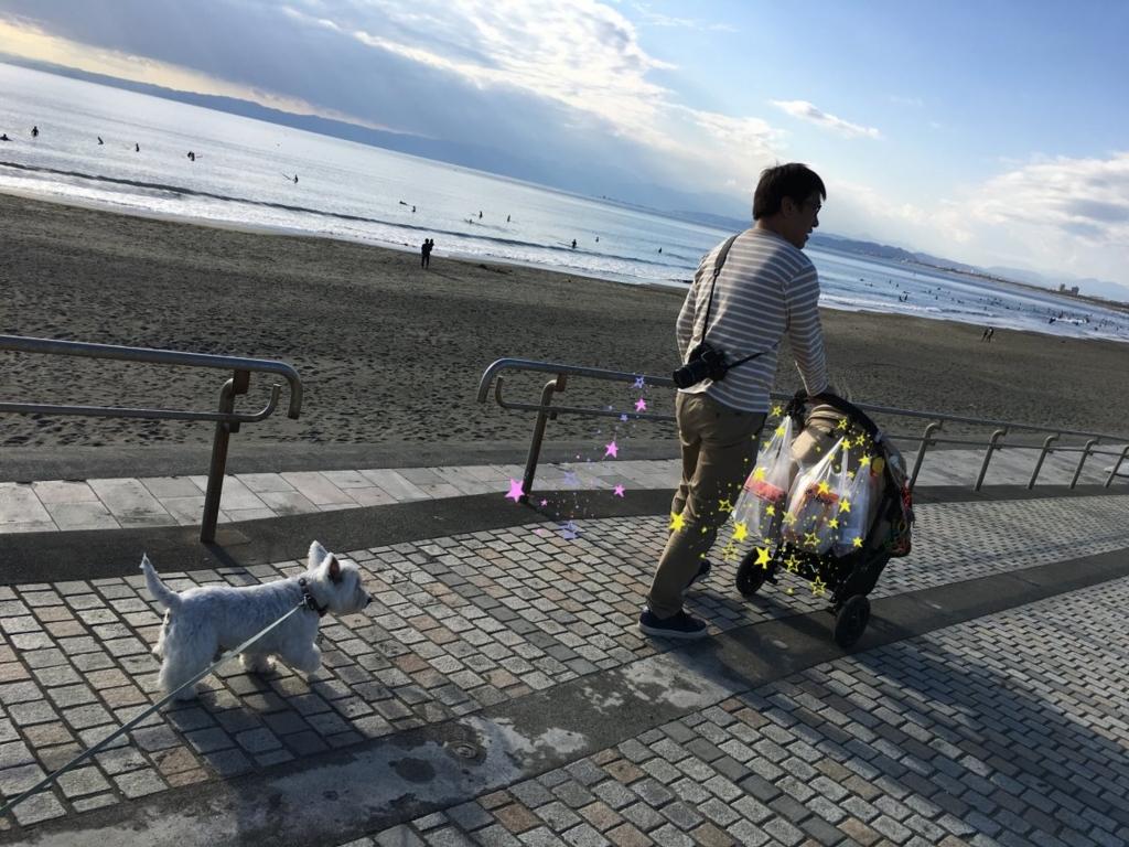 f:id:fuwafu-wanko:20161220114523j:plain