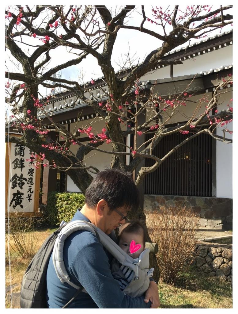 f:id:fuwafu-wanko:20170201134708j:plain