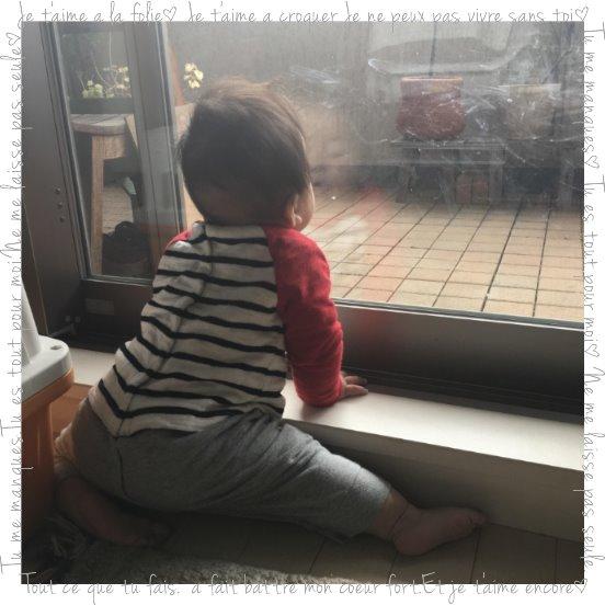f:id:fuwafu-wanko:20170225211447j:plain