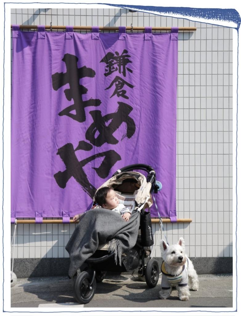 f:id:fuwafu-wanko:20170328101342j:plain