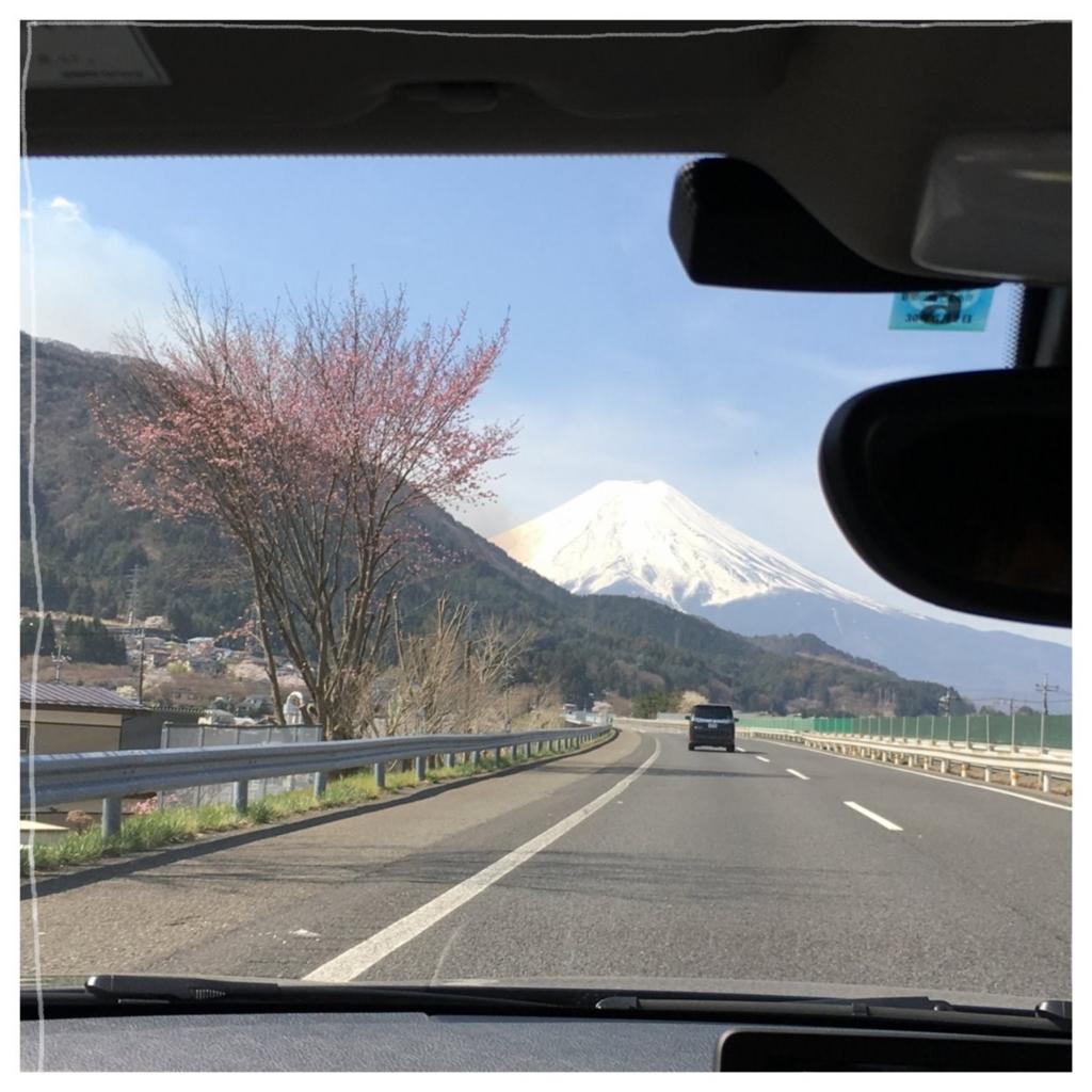 f:id:fuwafu-wanko:20170425152814j:plain