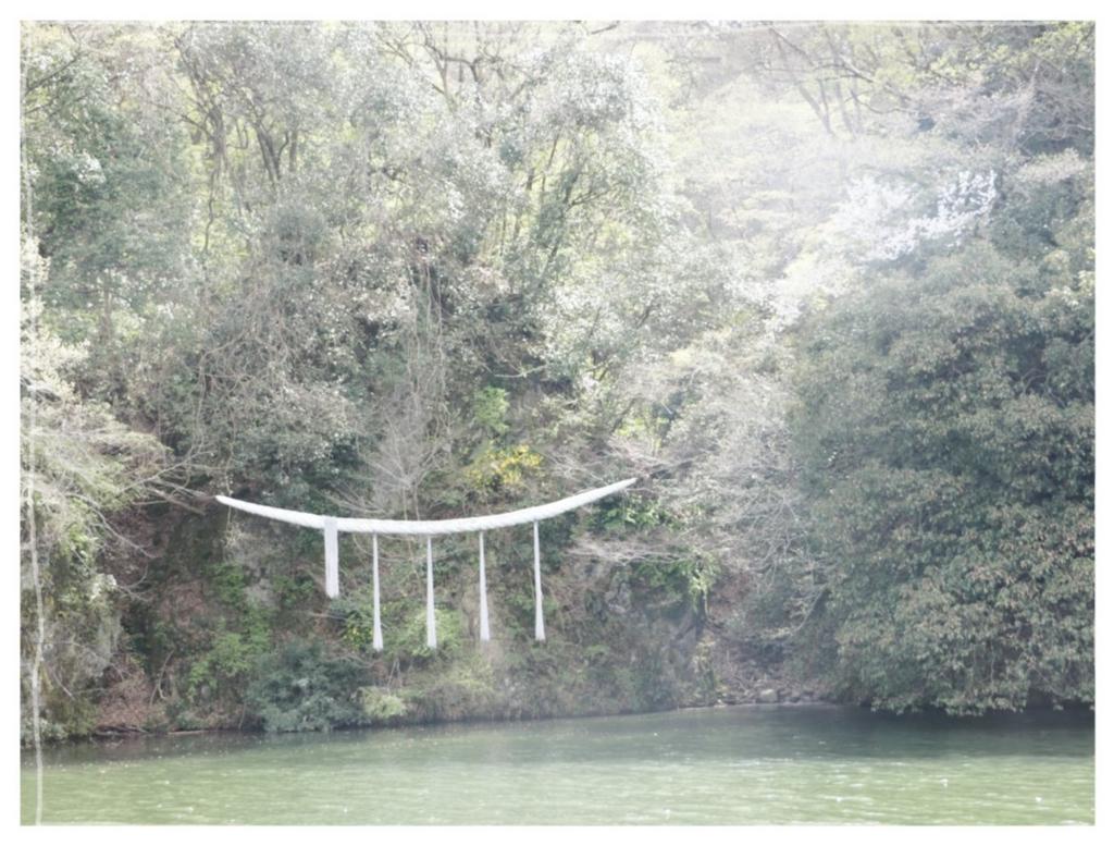f:id:fuwafu-wanko:20170425210527j:plain