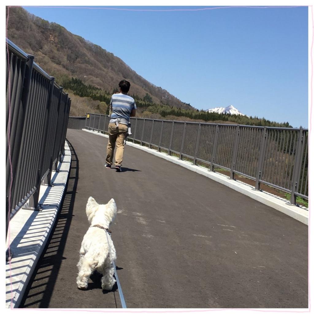 f:id:fuwafu-wanko:20170529211927j:plain