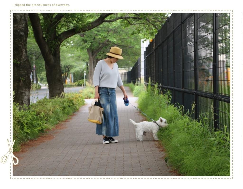 f:id:fuwafu-wanko:20170530133930j:plain