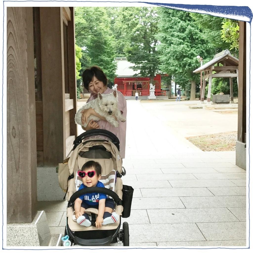 f:id:fuwafu-wanko:20170704221820j:plain